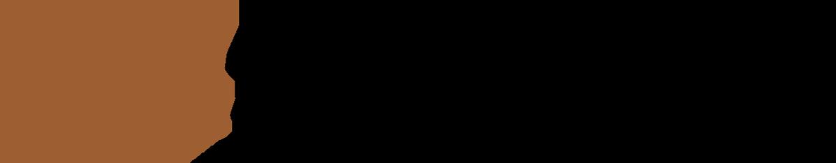 StoneAge Waterblast Tools logo