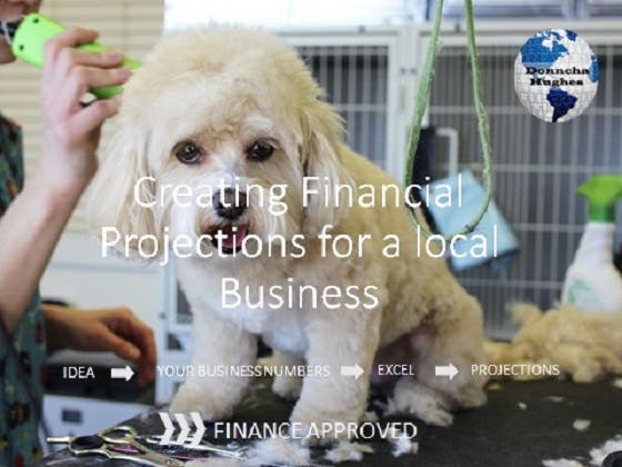 Financial Projections for Local Business