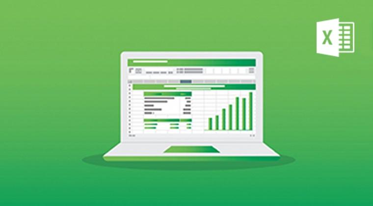 Microsoft Excel: Formulas & Functions