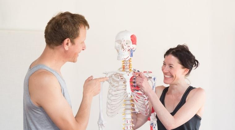 Yoga Anatomy Bundle