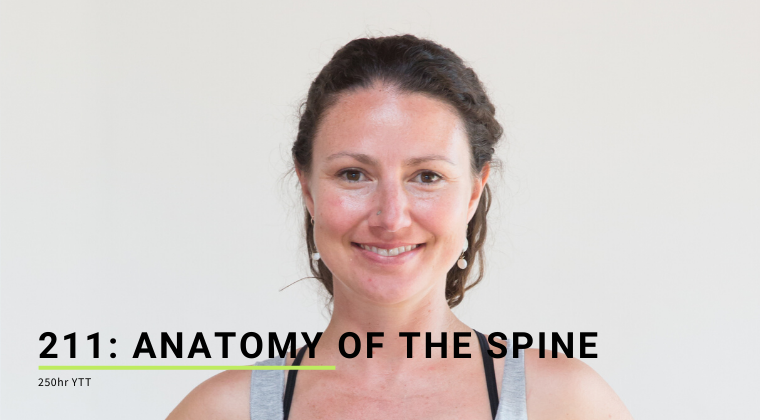 211: Anatomy of the Spine