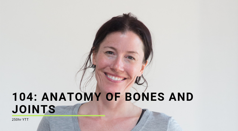 104: Anatomy of Bones and Joints