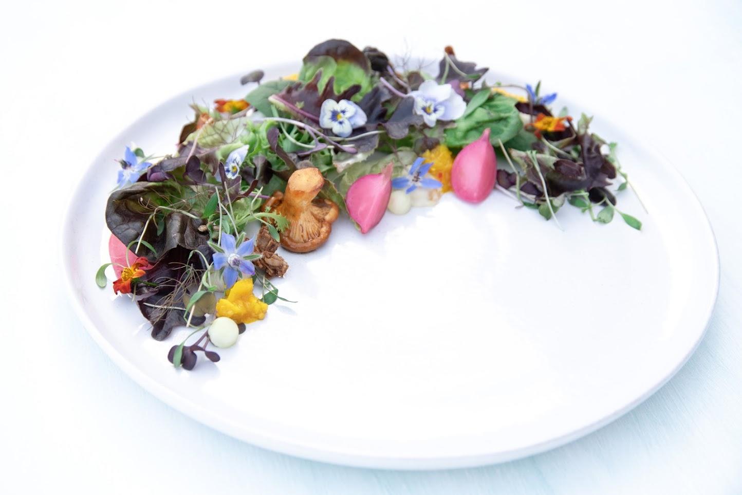 Deliciously Raw Salad Plating