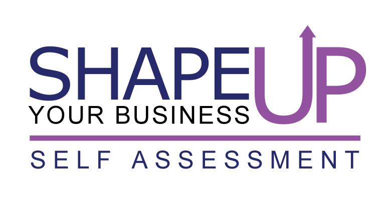 business self-assessment