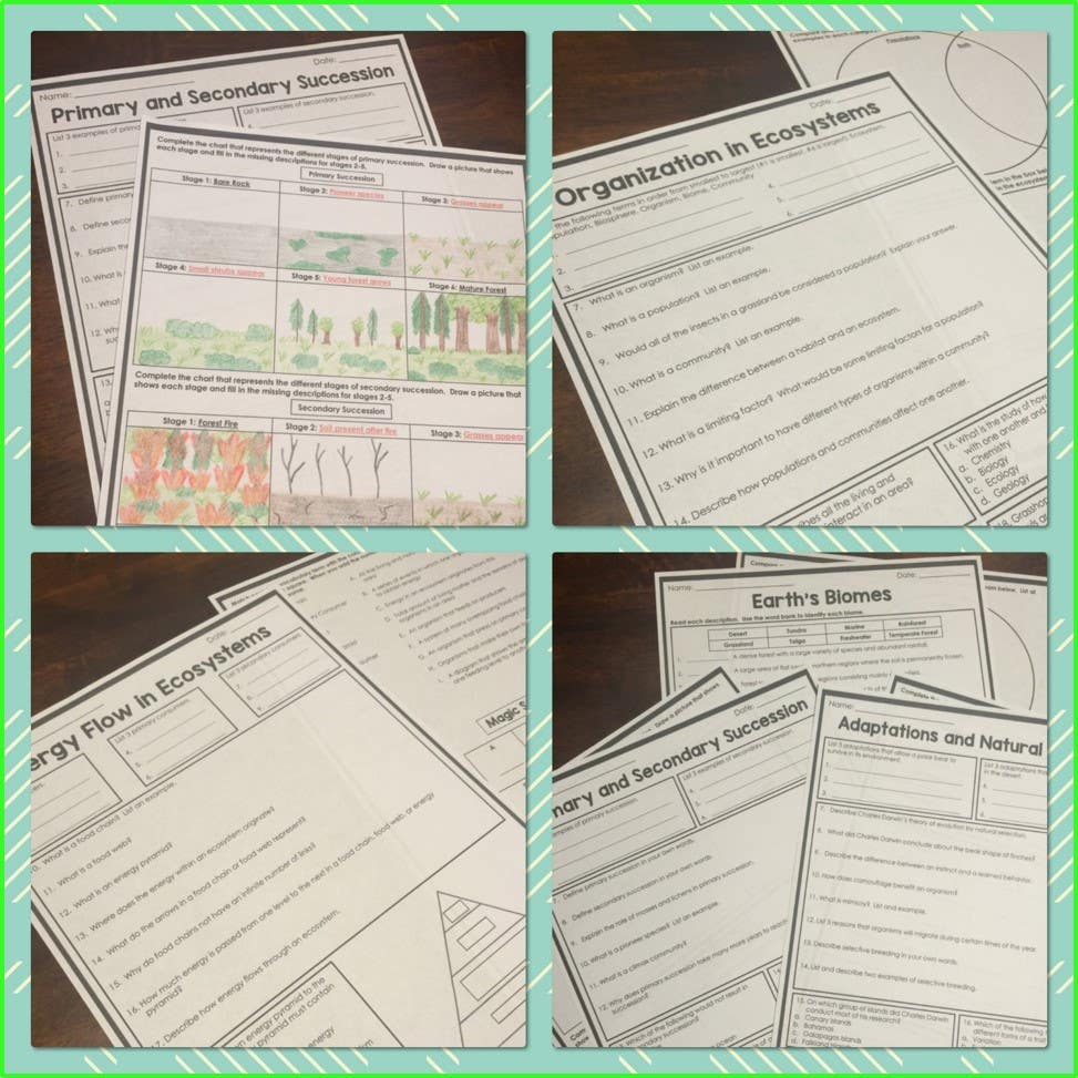 Ecosystems Homework Pages
