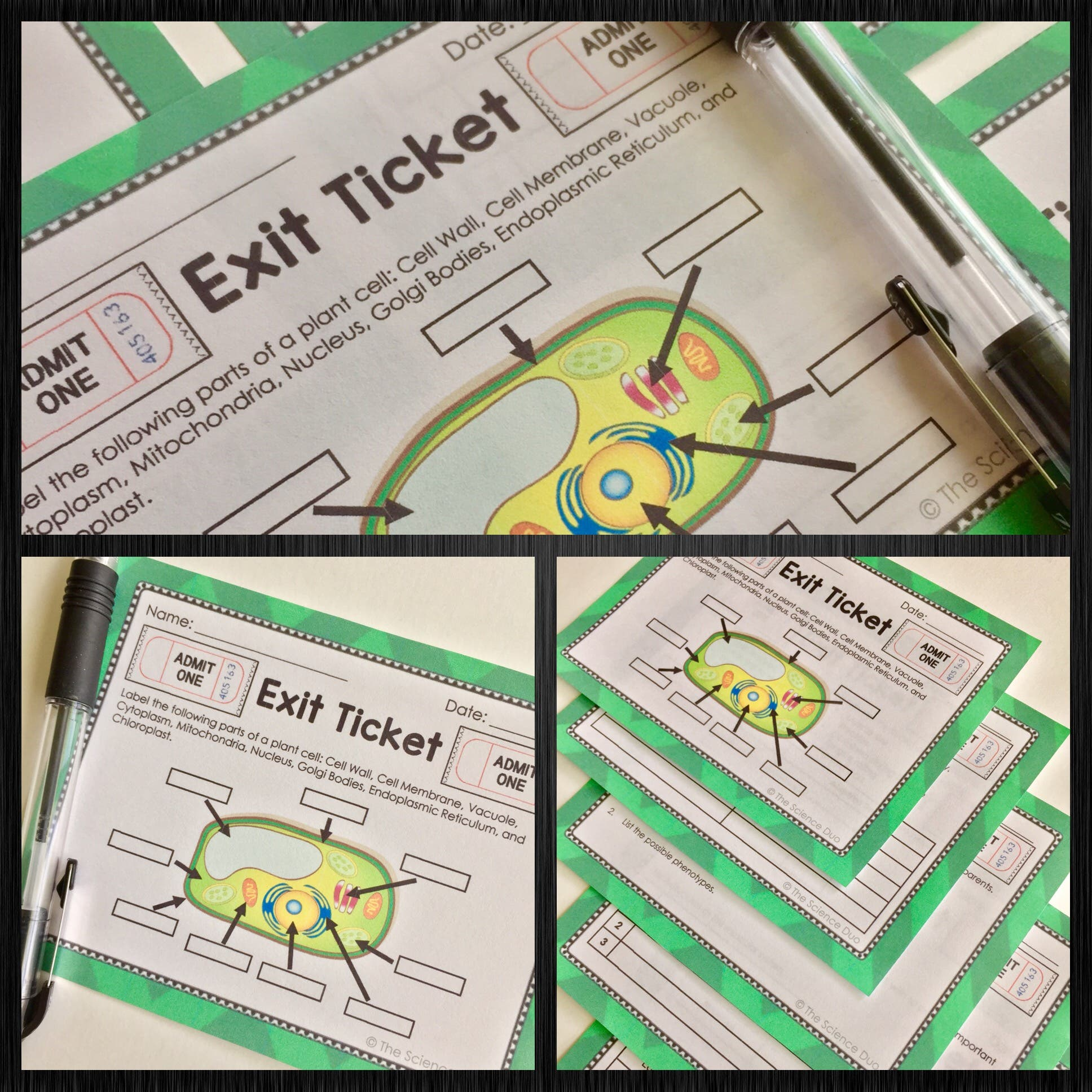 Structure of Life Exit Tickets