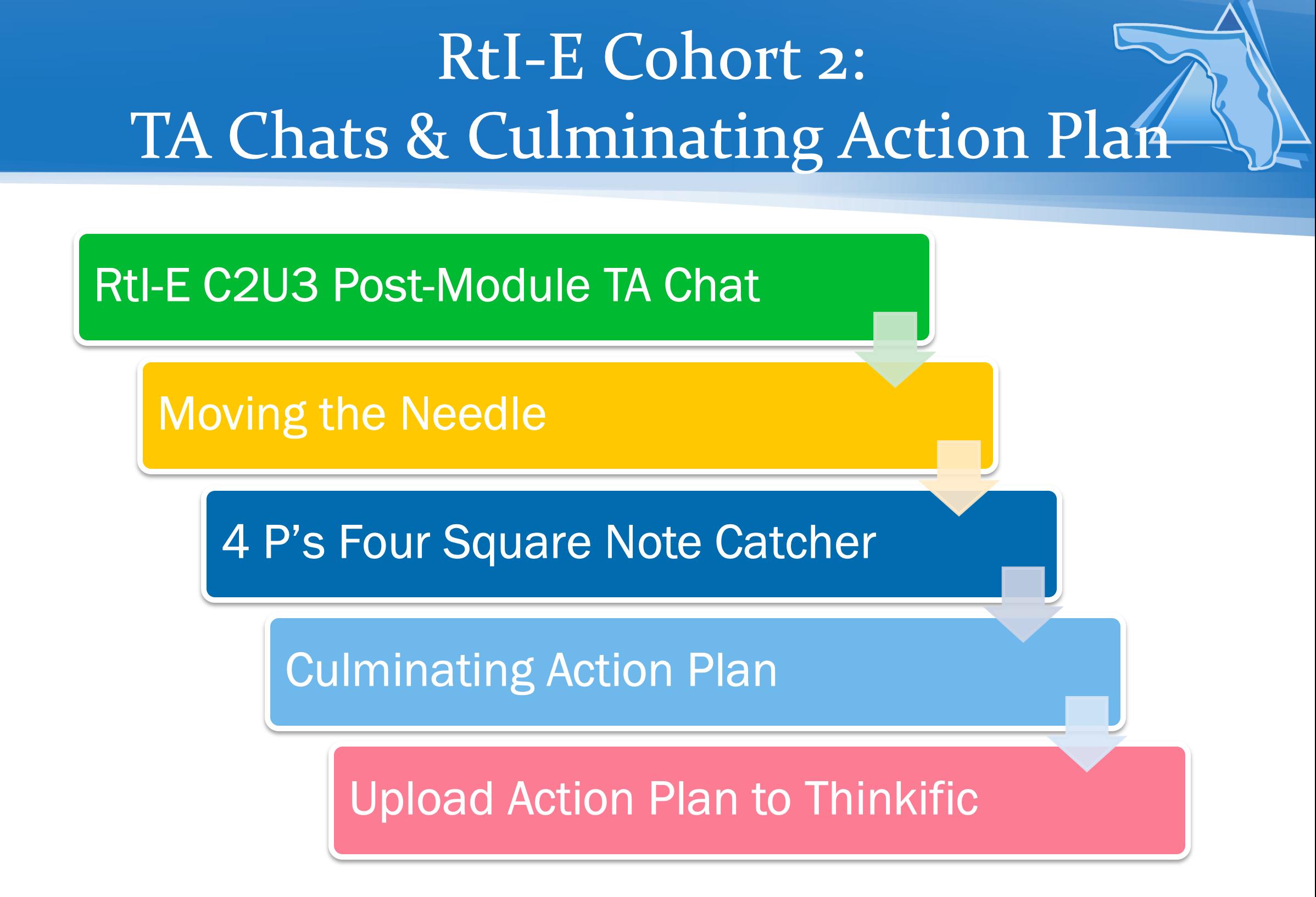Cohort 2, Unit 3 Follow-Up TA Chat & Culminating Action Planning Activity