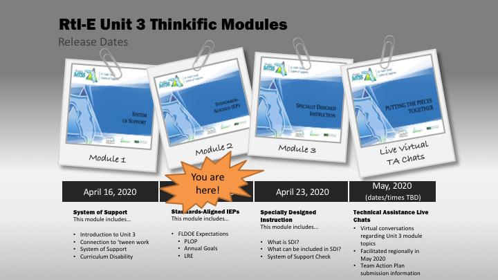 RtI-E Cohort 2 Unit 3 - Module 2 Standards Aligned IEPs