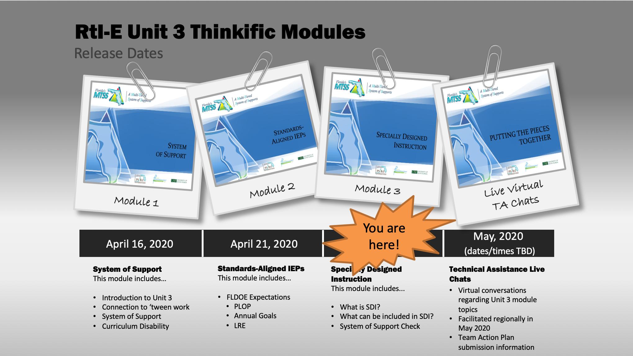 RtI-E Cohort 2 Unit 3 - Module 3 SDI