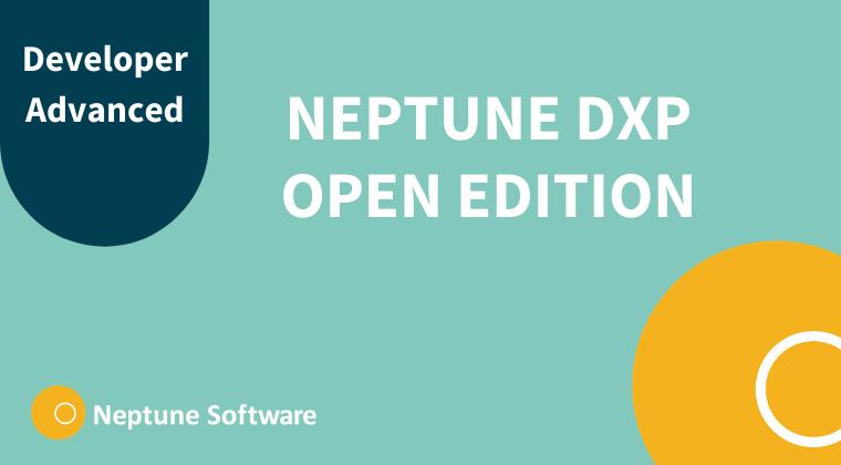 Neptune DXP - Open Edition Developer Advanced