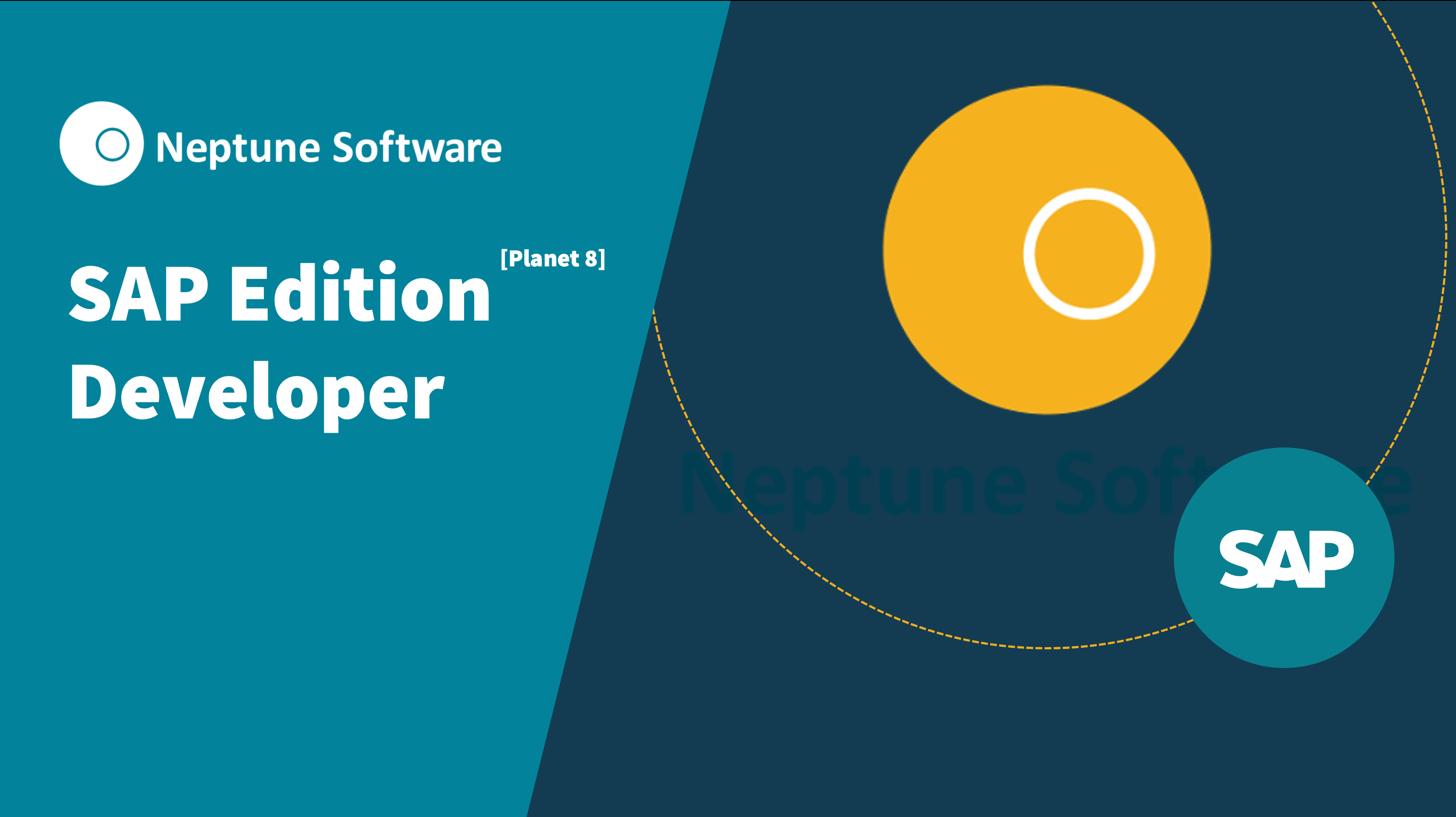 SAP Edition [Planet 8] - Developer Basic Level