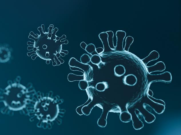 Image of a coronavirus