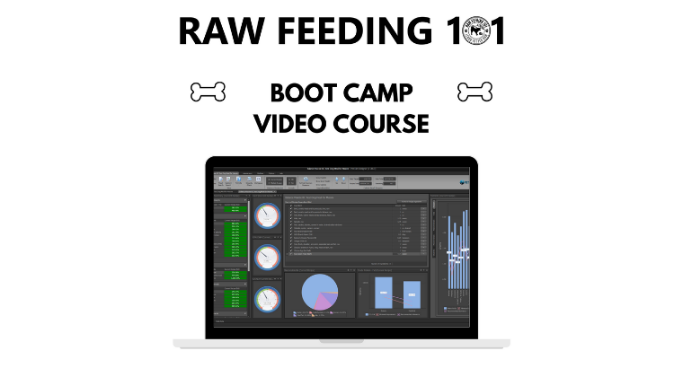 **BETA** Boot Camp Video Course