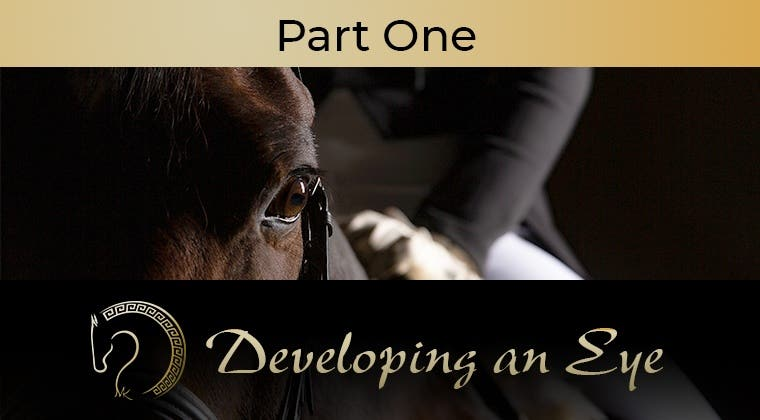 Developing an Eye - Part 1