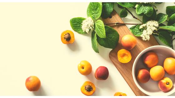 Understanding Macronutrients & Micronutrients (Masterclass Bundle)