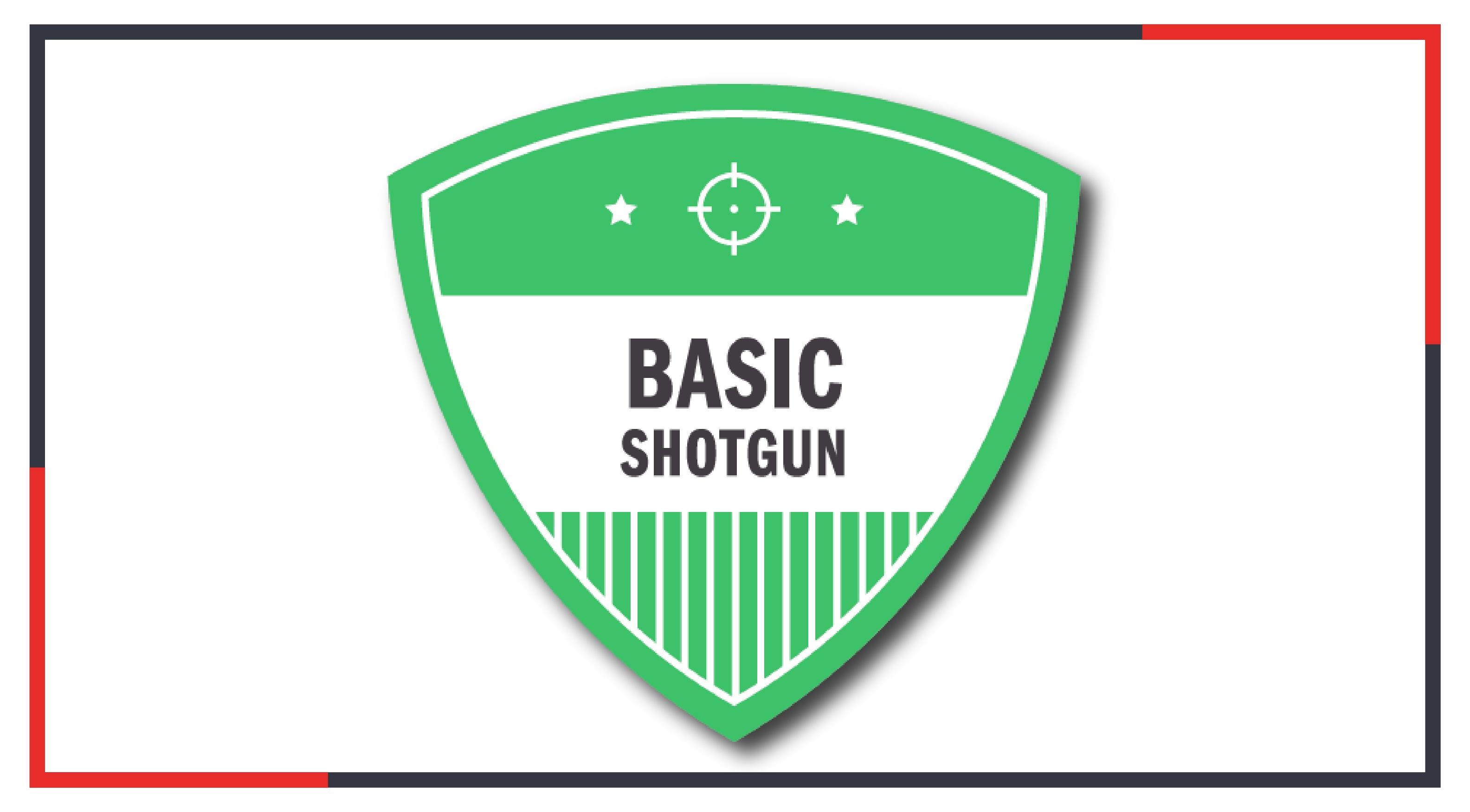 Basic Shotgun Online