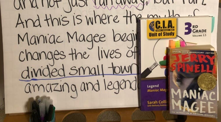 Online Learning - Maniac Magee