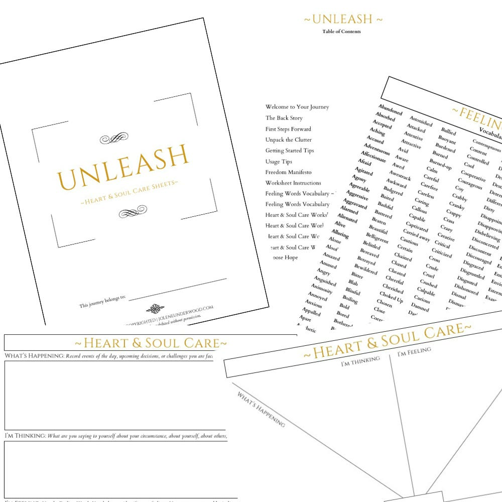 Unleash: Heart & Soul Care Sheets
