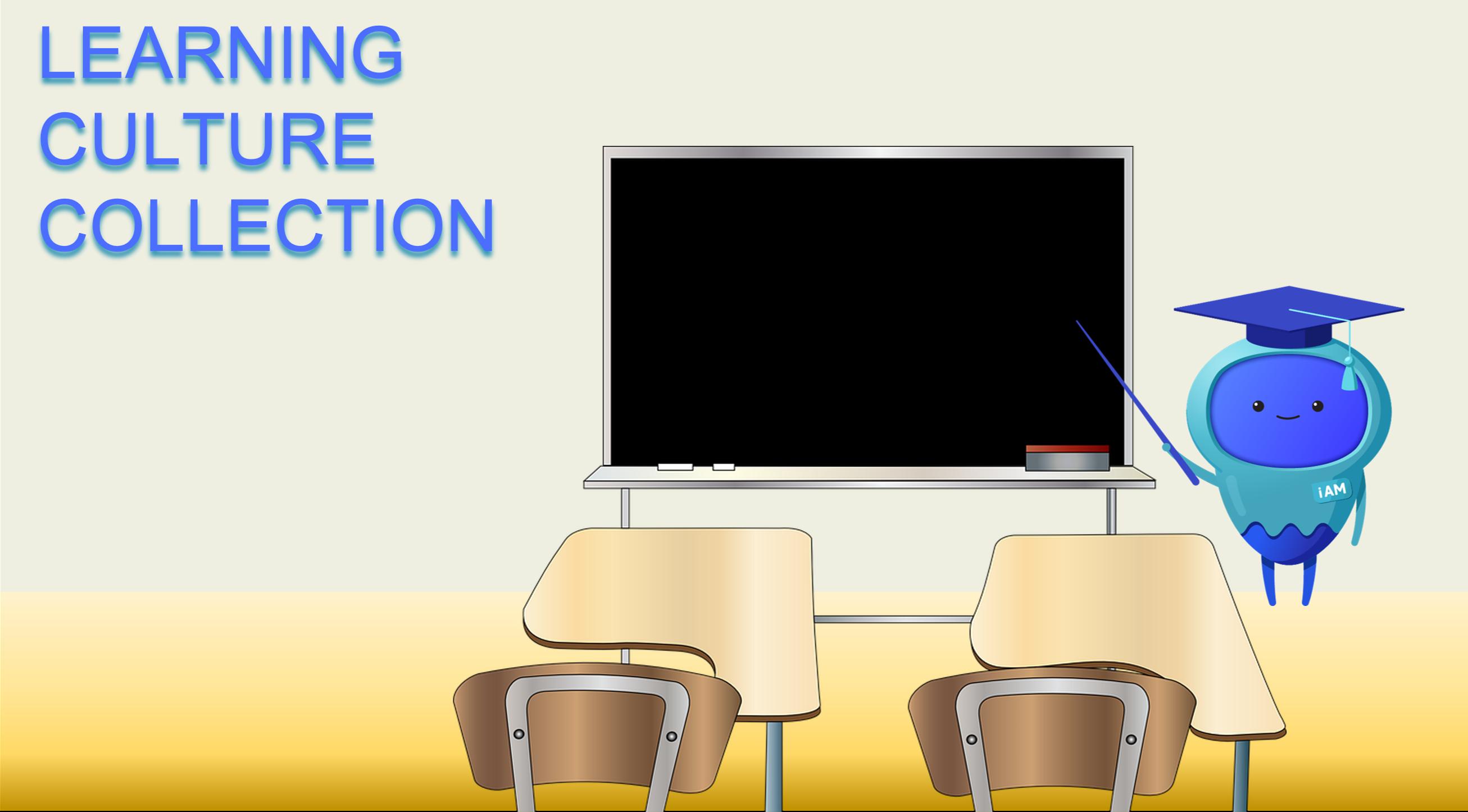 Establishing a Learning Culture