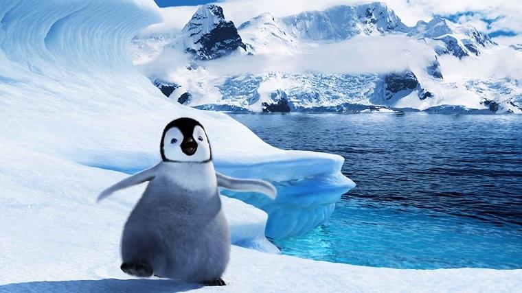 1. Linux telepítése VirtualBox alá