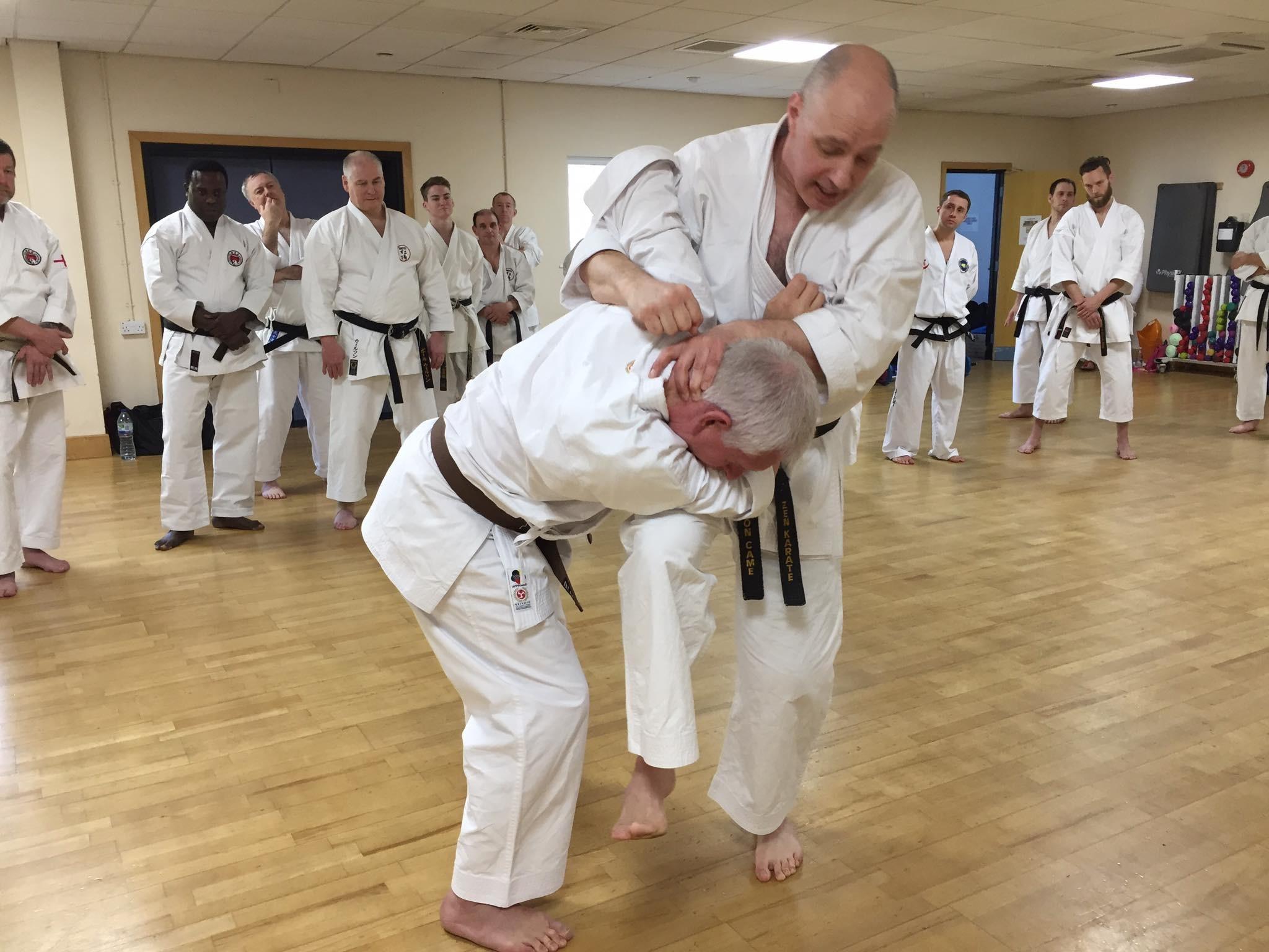 Exploring Karate Basics