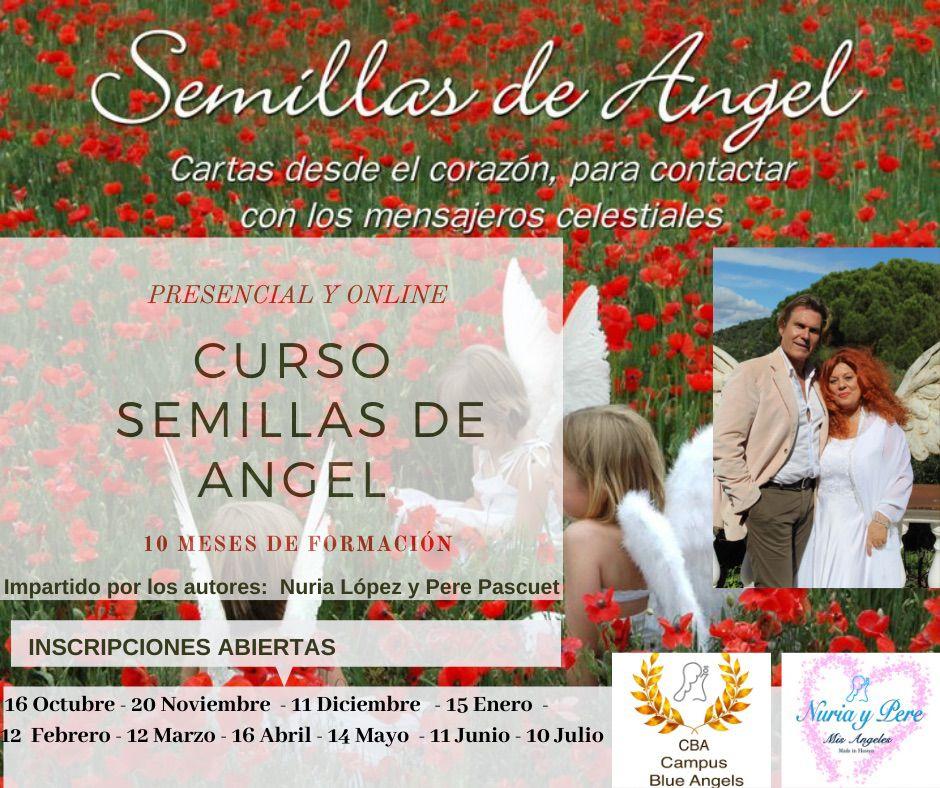 Curso lectura de las cartas de los angeles - Tarot