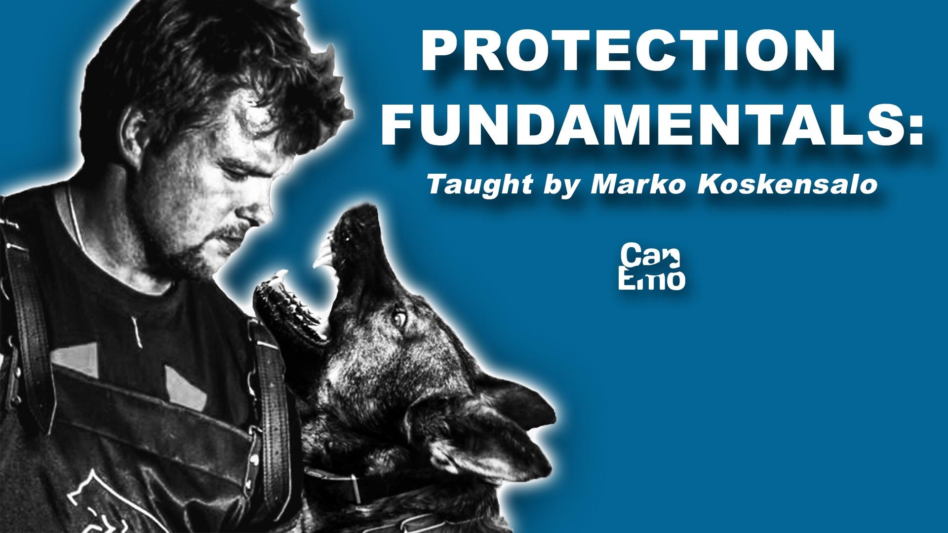 Protection Fundamentals