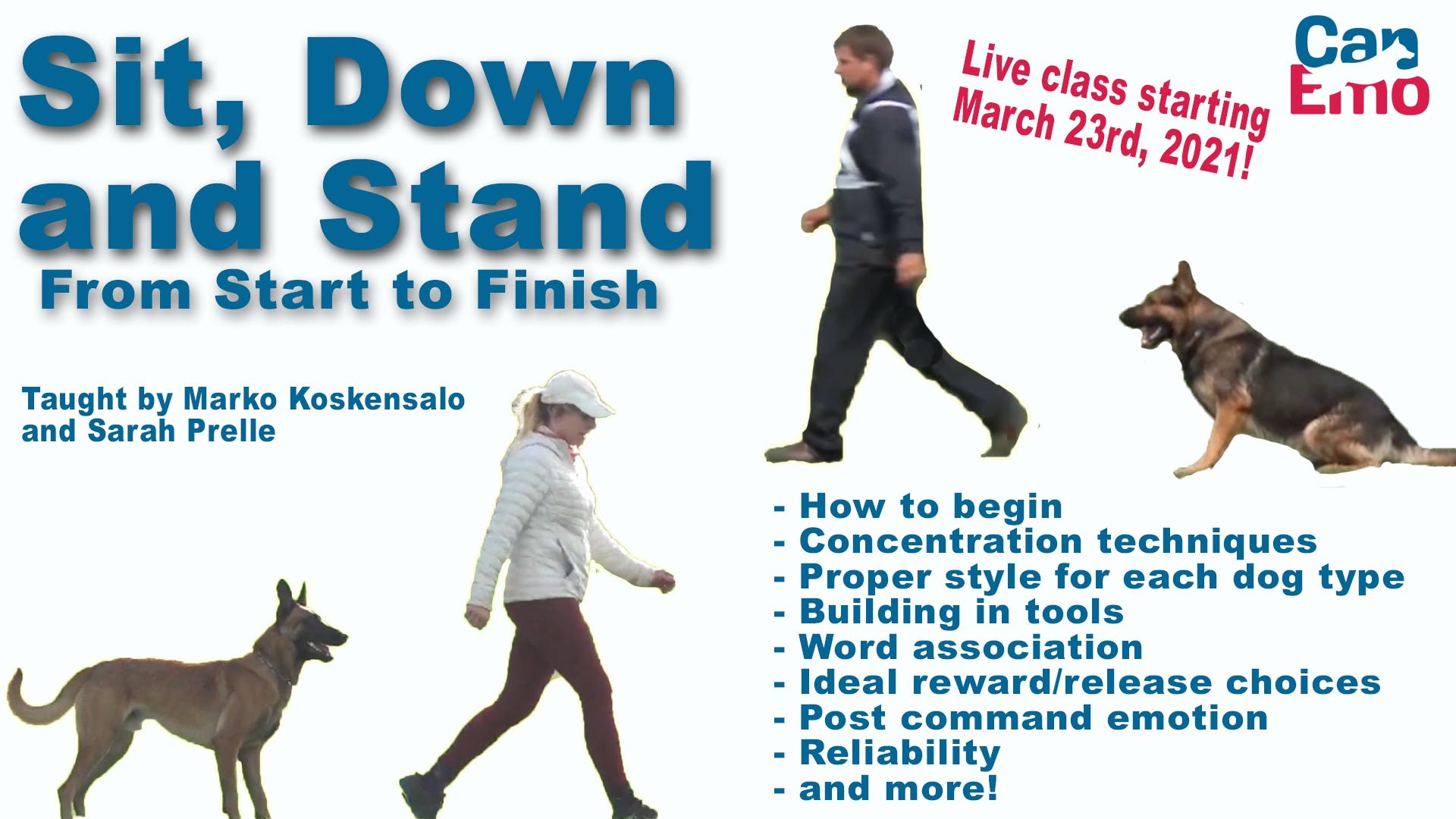 Sit, Down and Stand! From Start to Finish