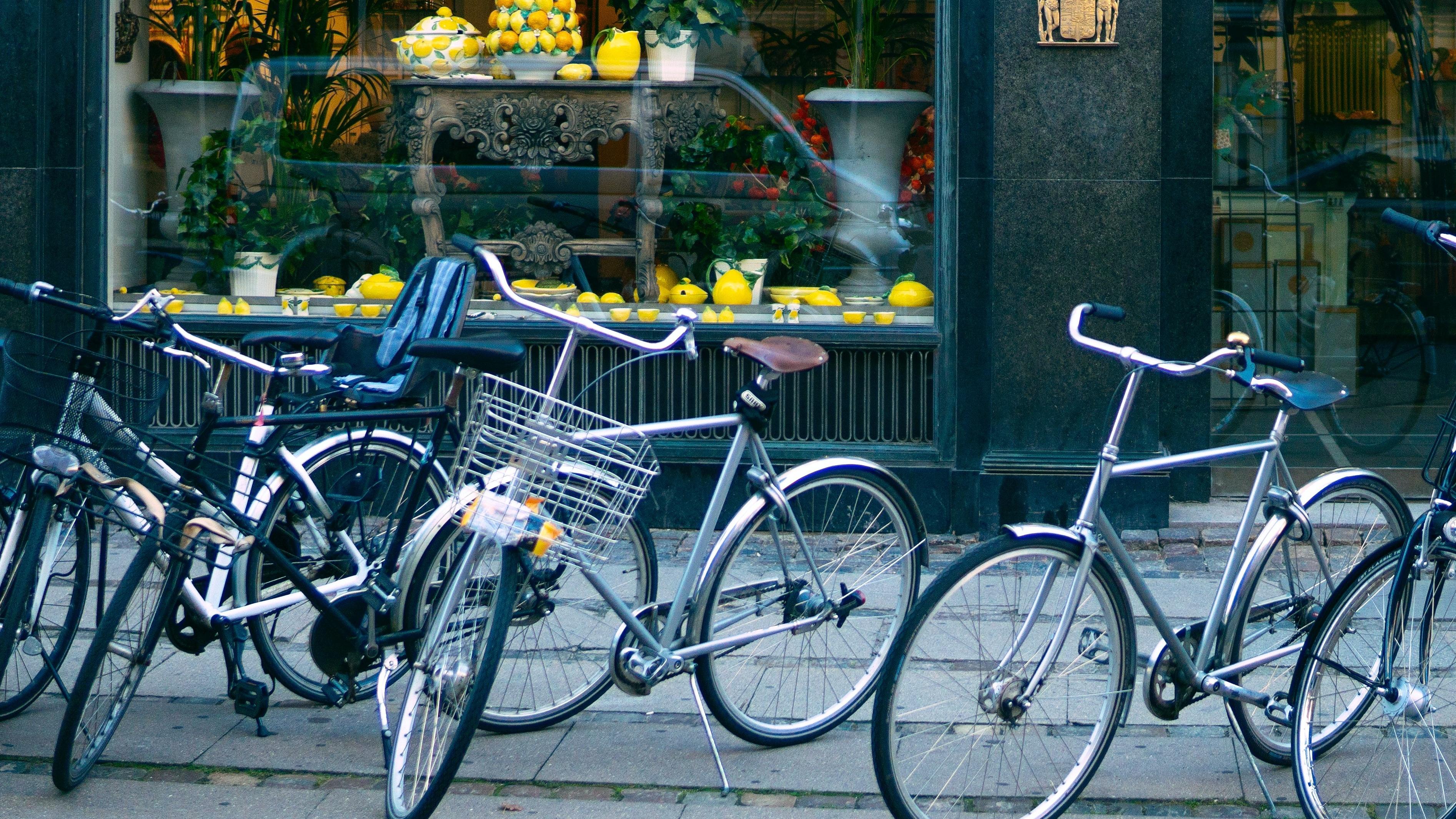 PASSION_La mécanique vélo de ville niveau expert