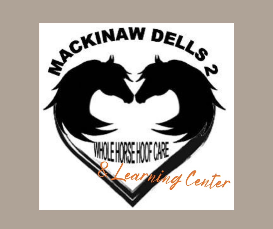 Mackinaw Dells 2 Learning Center