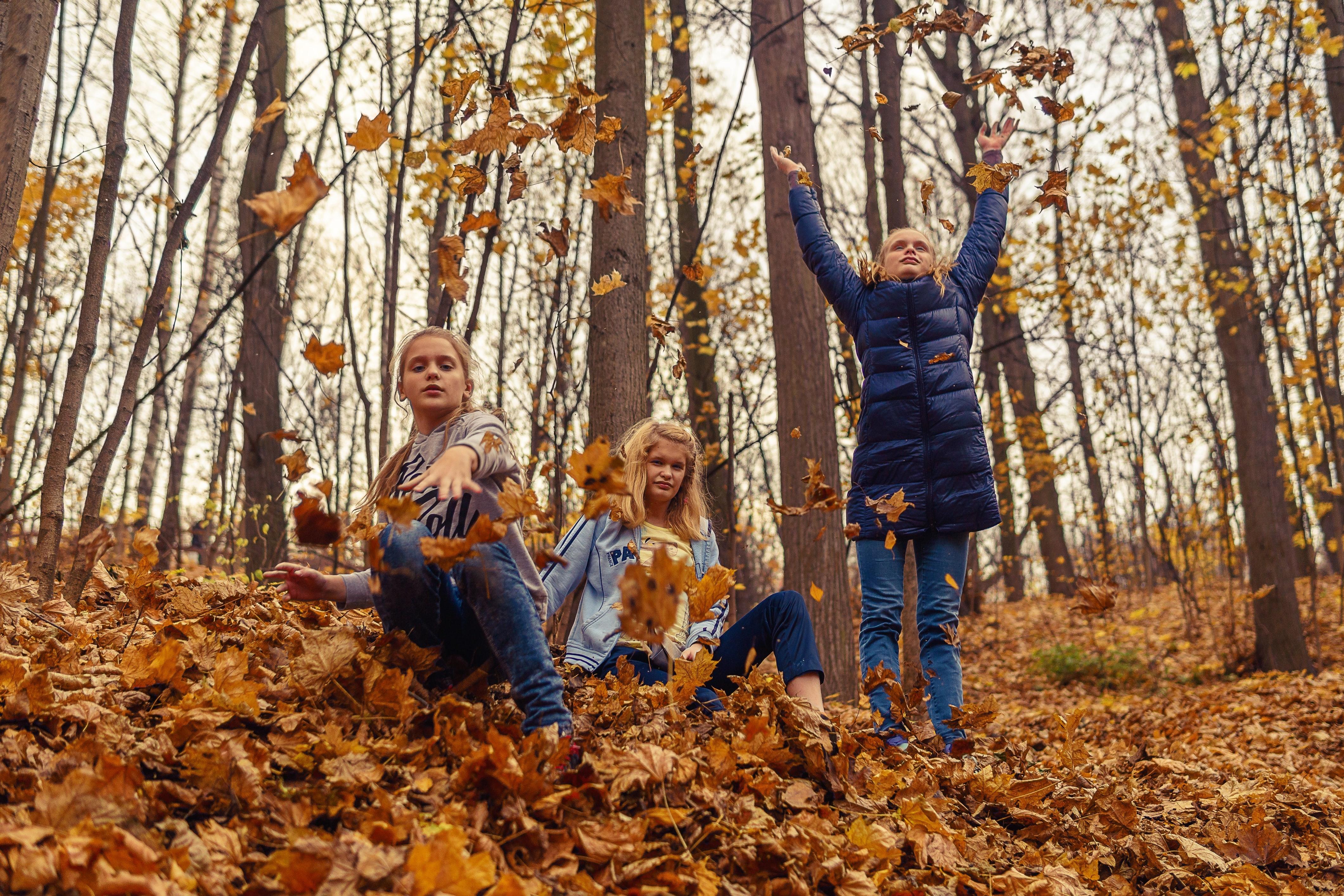 Three Day Live Foundational Training - TraumaPlay Certification Cohort November 2021