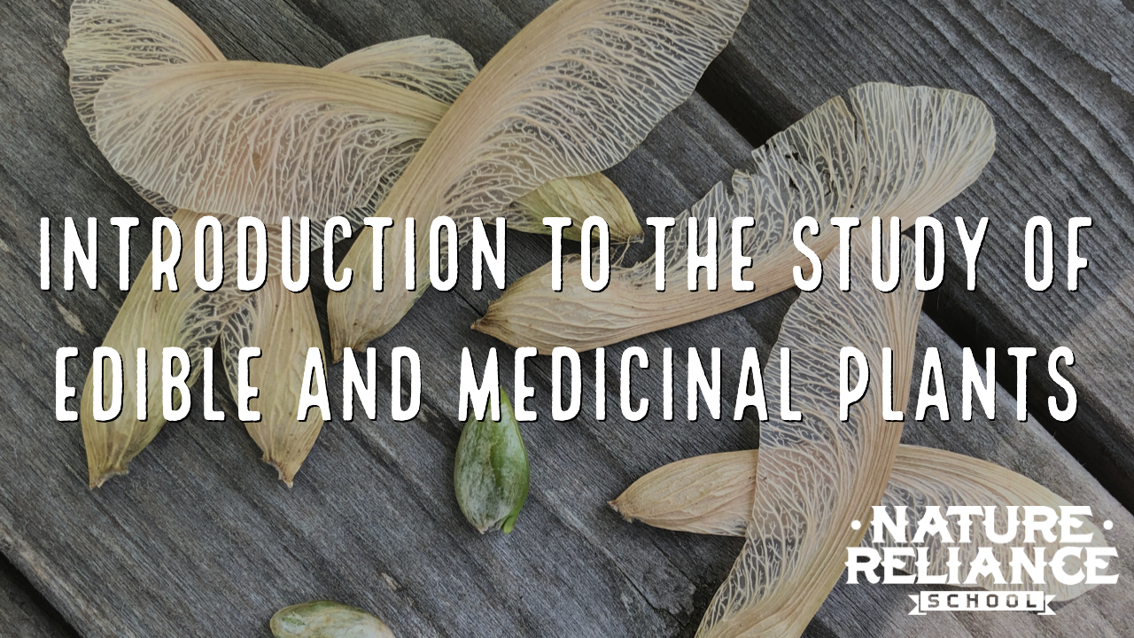 Introduction to the Study of Edible & Medicinal Plants