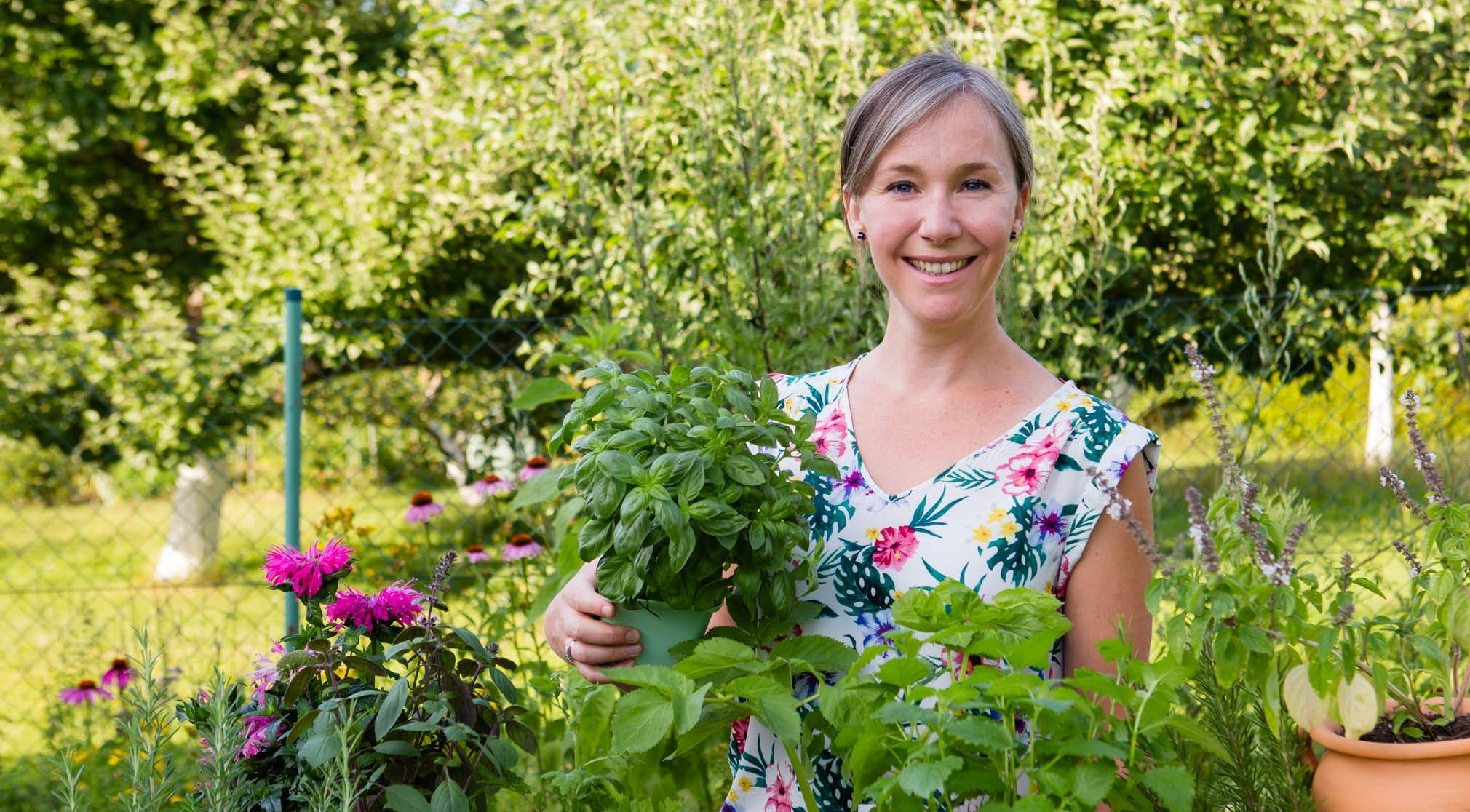 How to Grow Your Own Medicinal Herb Garden