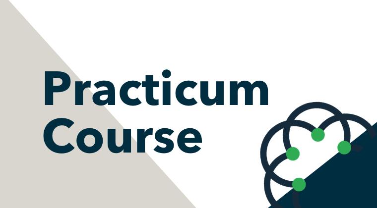 SYMMETRY Practicum Course