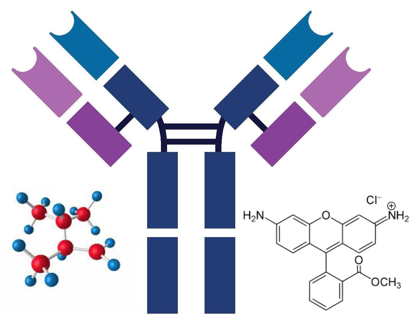 Small & Large Molecule Drug Courses Bundle