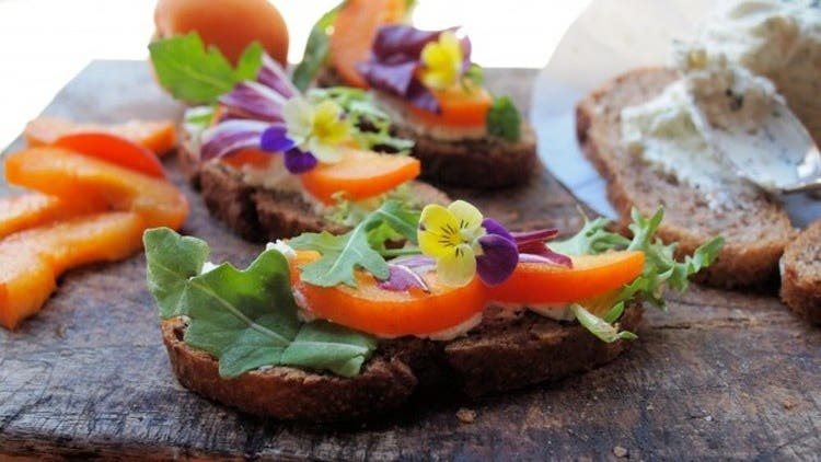Accredited Herbalism  Course - Incredible Edible Flowers