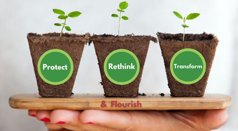 Protect · Rethink · Transform & Flourish team toolkit