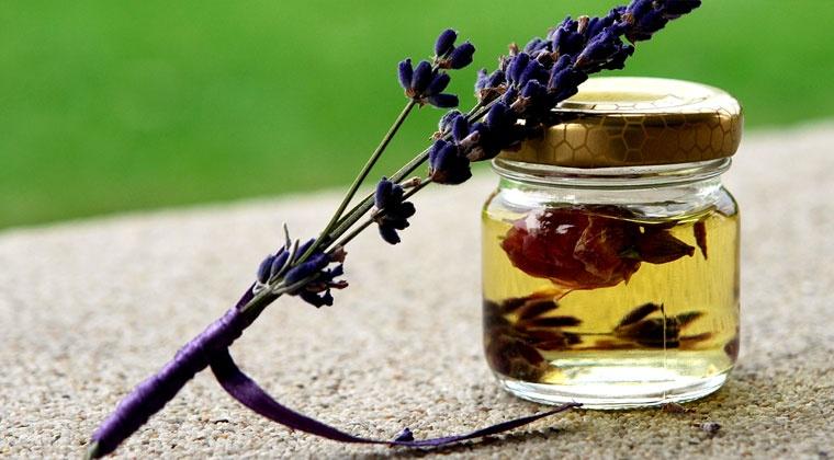 Mercredi AM : Herboriste et aromathérapeute familial en classe