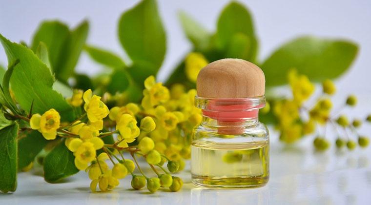 Pathologies : comprendre et traiter avec les huiles essentielles | cours en ligne