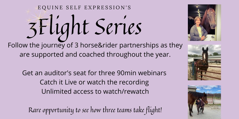 3Flight Series A, First Webinar