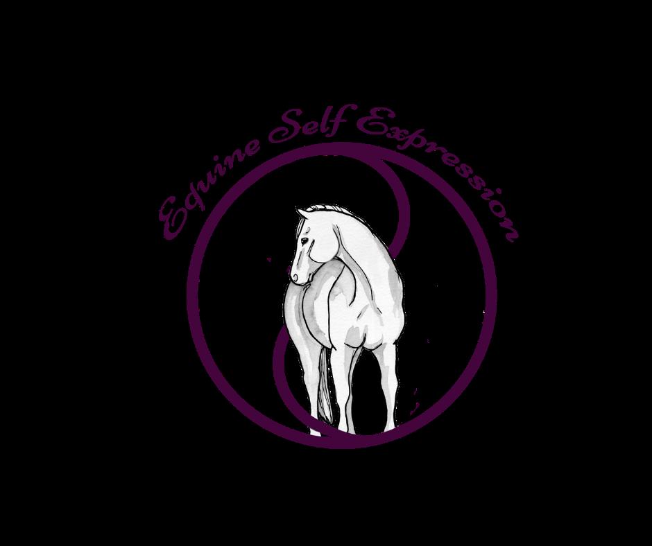 Deb Davies School of Equestrian Education