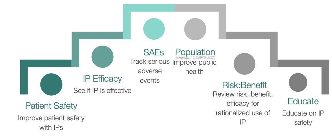 Pharmacovigilance Roles