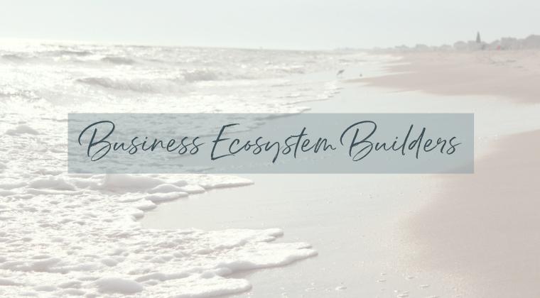 Business Ecosystem Builders