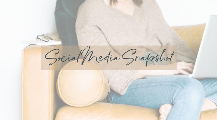 Social Media Snapshot