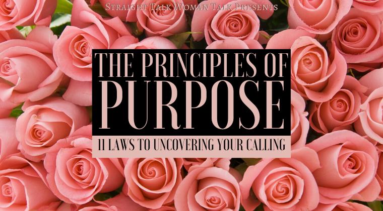 The Principles of Purpose