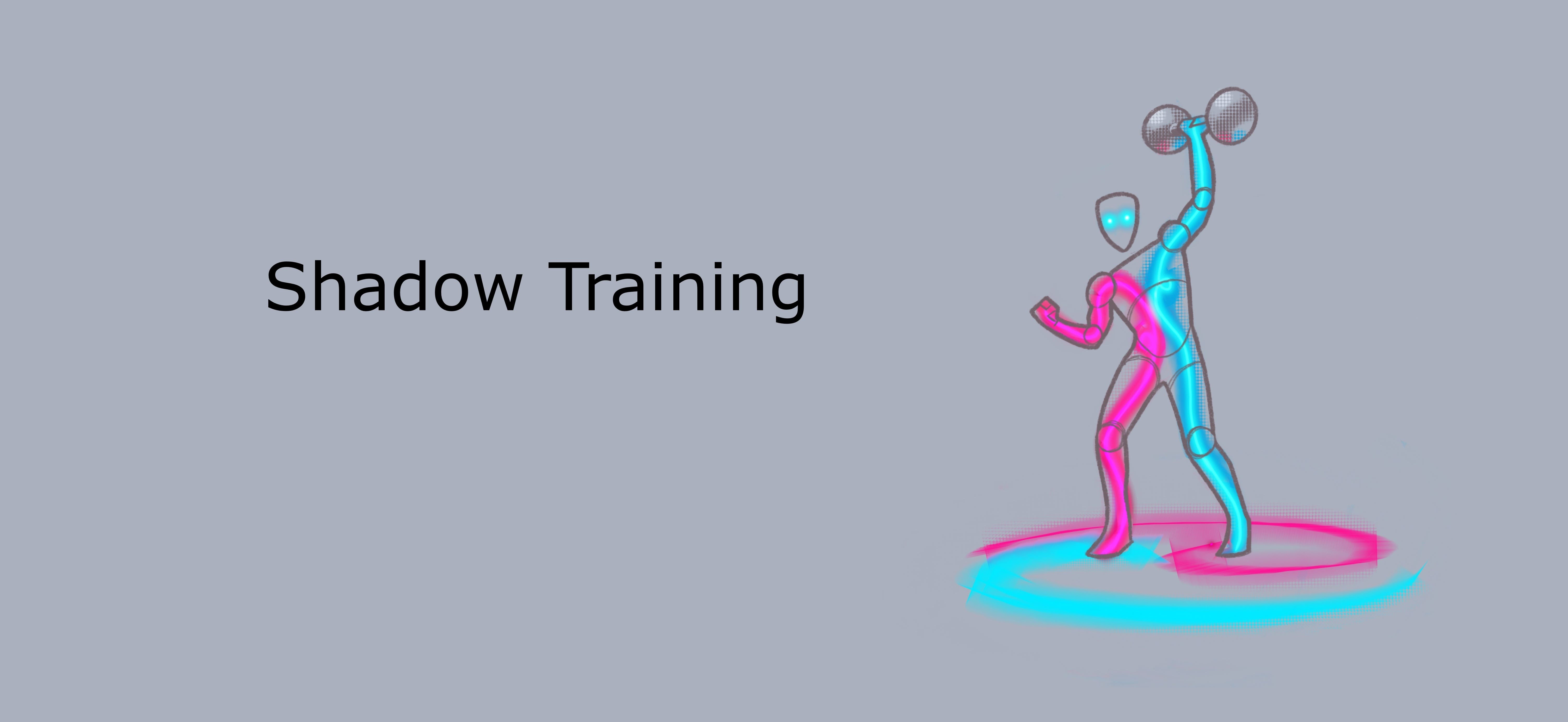 Shadow Training