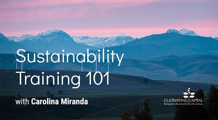 Sustainability Training 101