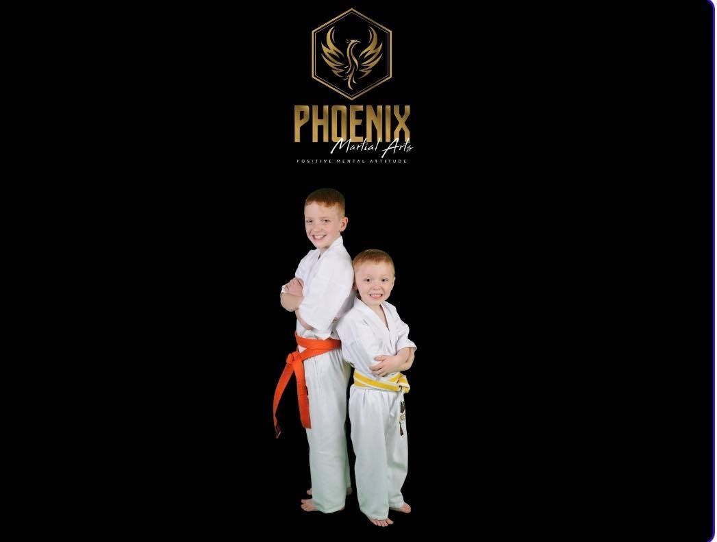 Online New Karate Members course