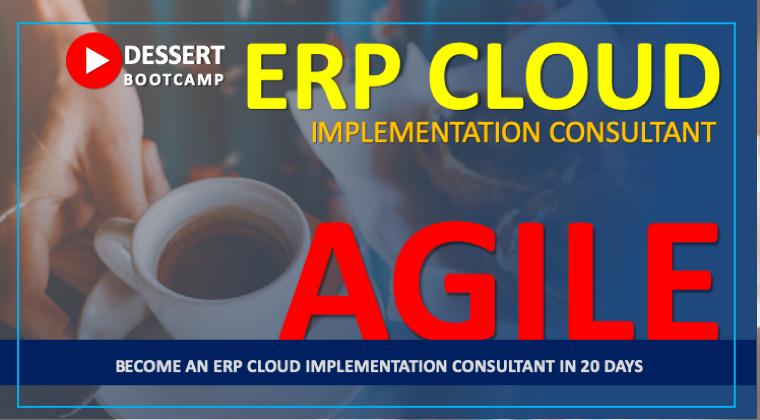 Agile Consultant : ERP Cloud Bootcamp - Dessert