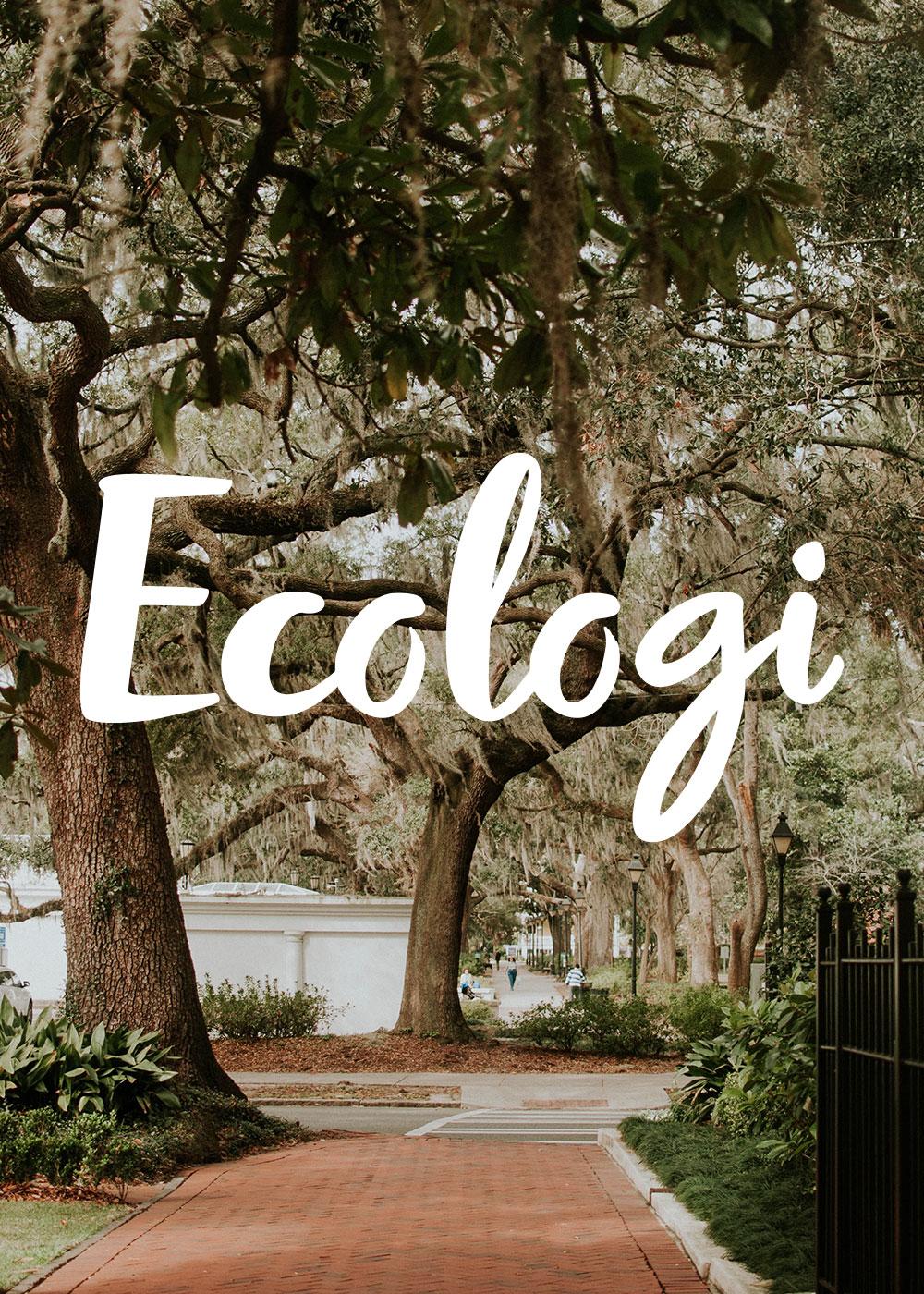 Ecologi with DesignClass
